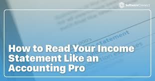 How to read an Income Statement, accountant,Certified Public Accountant,capital gains,Accountants Can Help Key Performance Indicators,Accountants Strategy For Struggling Businesses,Accountant,Why You Should I Hire an Accountant For a Small Company?,Maximize Your Accountant Relationship,Financial Statement Footnotes,Financial Statement Disclosures or Footnotes,Cost of Sales,COGS ,Cost of Goods Sold ,Last in last out accounting,LIFO accounting,First in first out accounting,FIFO accounting,accounting methods ,income before taxes,income from operations,operating expenses,Multi-Step income statement,Single Step income statement,balance sheet,income statement represents a period of time,gross profit,net profit,net income,company's financial statement,statement of operations,operating statement,earnings statement,statement of financial performance,revenue statement,profit and loss statement,Profit & Loss,P&L,Income statement,How to read a P&L,How to read an Income Statement